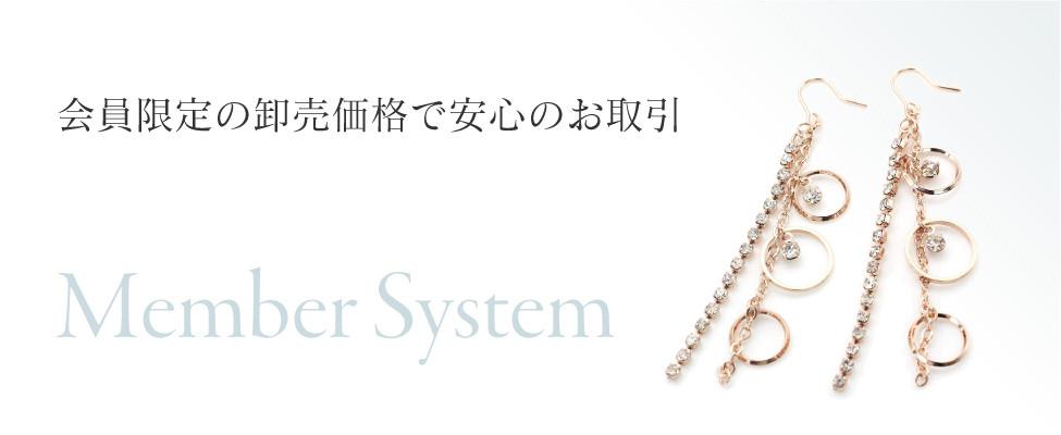 ヴィサージュジャパン2